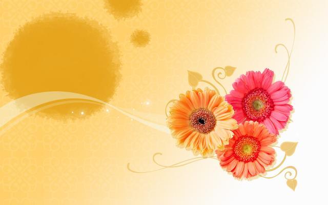 Цветы - фото 0105