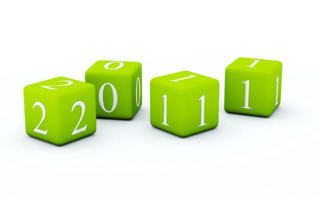 Новый год 2011 - фото 0136