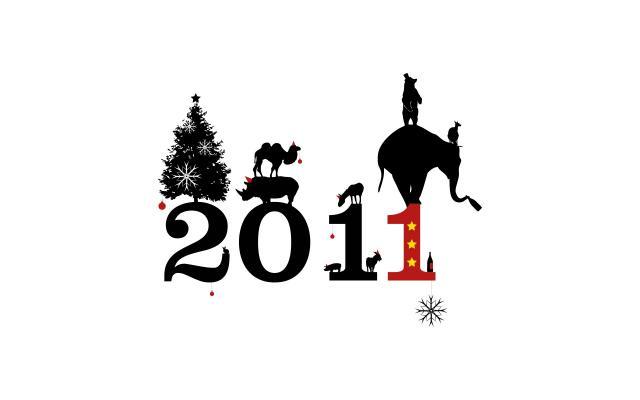 Новый год 2011 - фото 0459