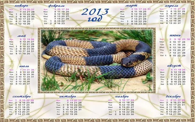 Новый год 2013 - фото 0565