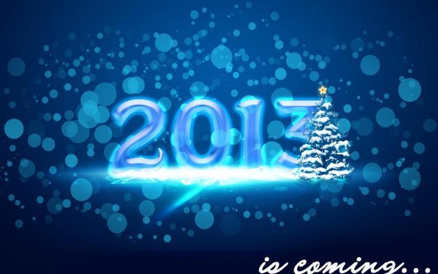 Новый год 2013 - фото 0573