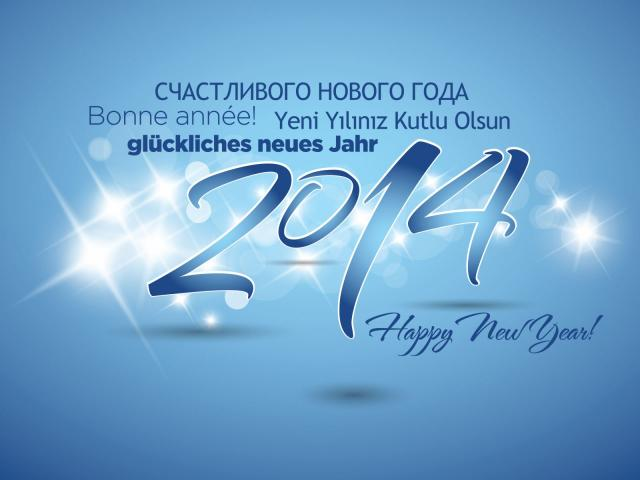 Новый год 2014 - фото 0713