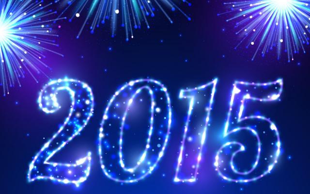 Новый год 2015 - фото 0771