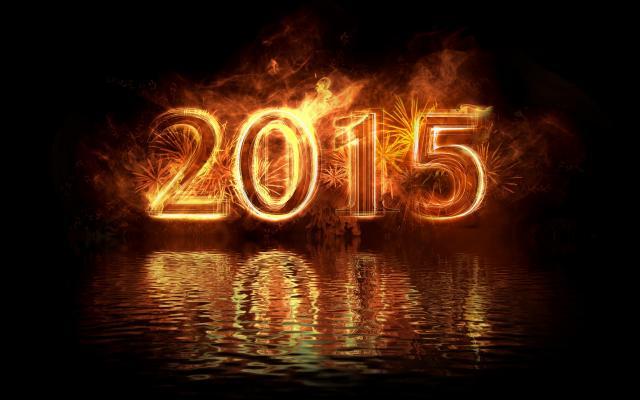 Новый год 2015 - фото 0789