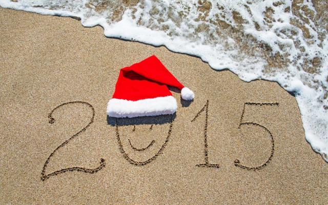 Новый год 2015 - фото 0823